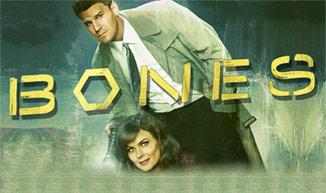 Bones | Season 8